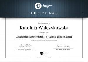 certyfikat 2-1
